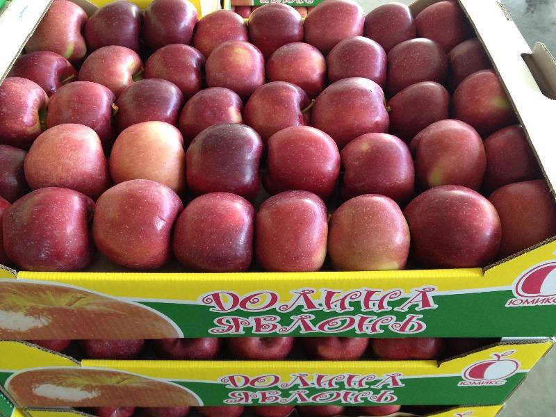 Товарный сорт плодов