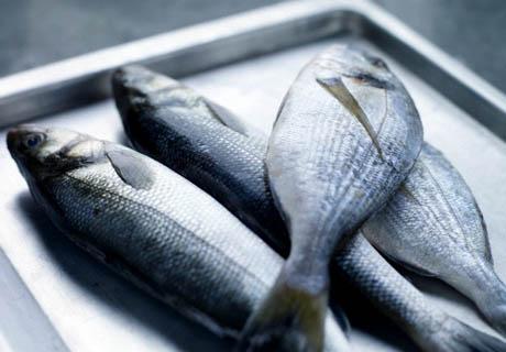 Прокуратура просит главу Заполярья заняться вопросами рыбопереработки