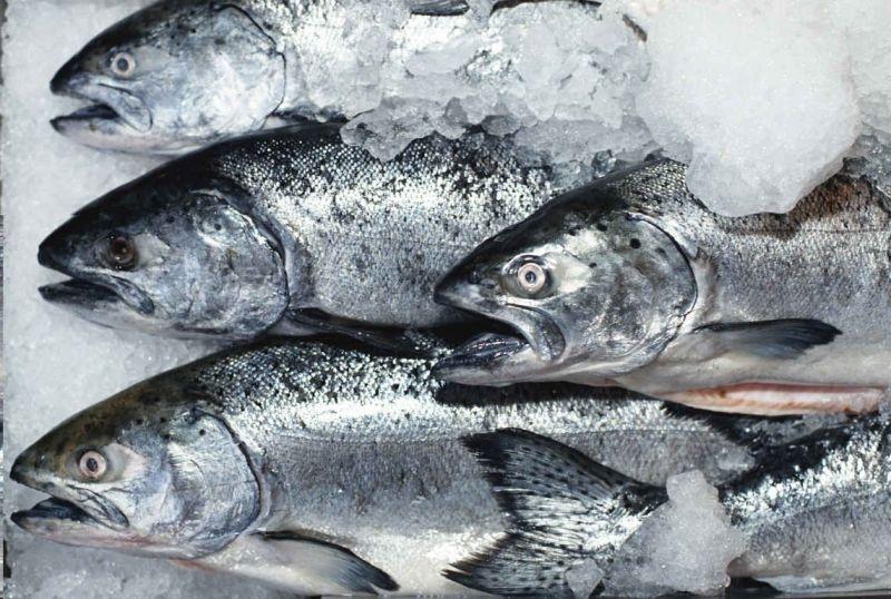 грибы замороженные рецепт: рыба в соевом соусе.