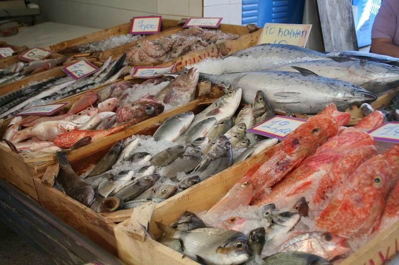 оптовый база рыбалка в воронеже